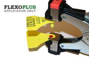 flexoapp-medium-medium