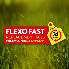 Flexo Fast
