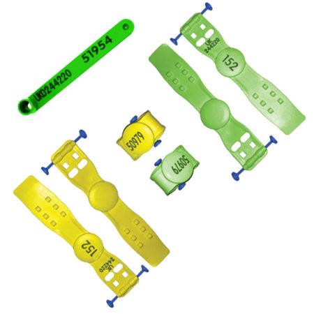 Leg-Pastern-and-Loop