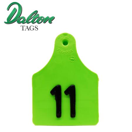 Dalton Pig Tag green